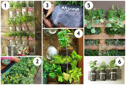 DIY Herb Garden Ideas