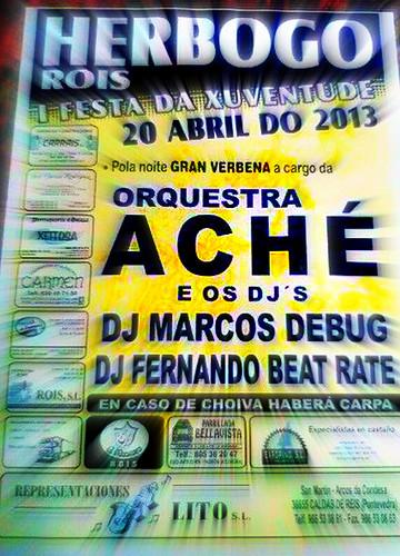 Rois 2013 - I Festa da Xuventude en Herbogo - cartel