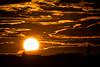Web sunset