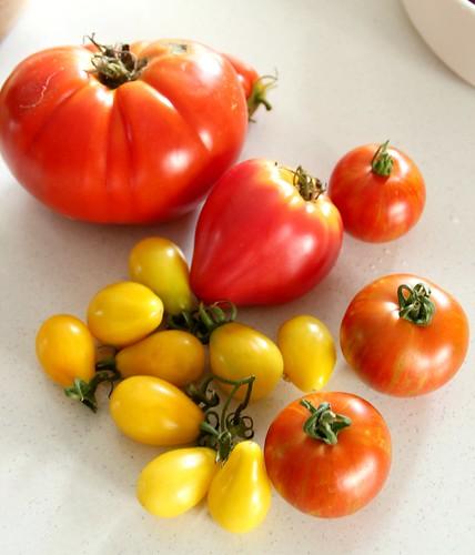 Tomato, Basil & Mozzarella Salad 2