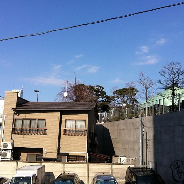 打刃物定康さんの店舗と馬込長遠寺