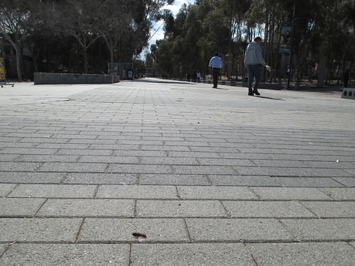 UC San Diego | Library Walk