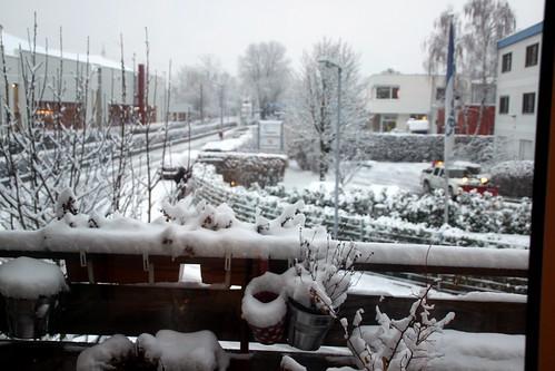 schnee bewundern. #12v12