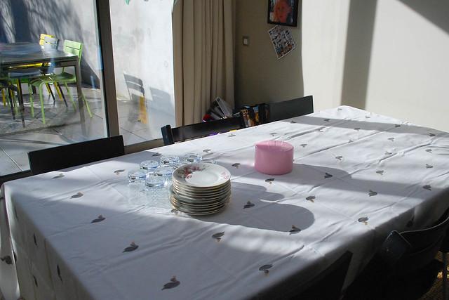 Verjaardagsfeestje Roos (3 van 14)