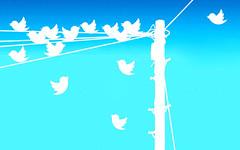 Tweeting, Multiple Tweets Gradient