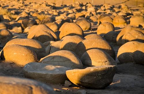 16 Anza-Borrago California Desert Park