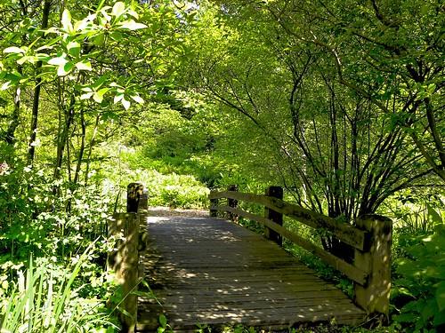 A Walk to Paradise Garden