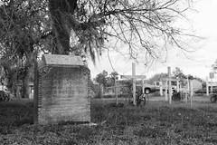 Grave of Dabney M. Walker