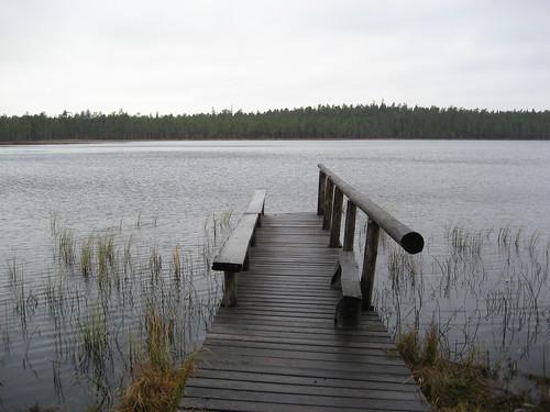 autumn lake nature grass forest fence suomi finland bench nationalpark swamp 2007 keskisuomi saarijärvi pyhähäkki forestresort centralfinland pyhähäkkinationalpark pyhähäkinkansallispuisto pyhahakki kotajärvi