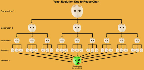 YeastEvoChart
