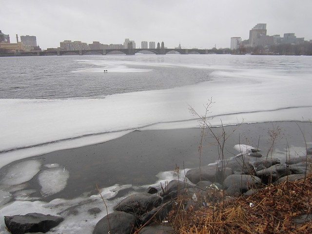 Morning Walk on the Charles River in February