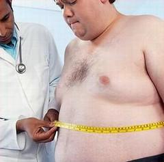 WHO/UNEP在研究報告中指出肥胖與環境荷爾蒙之間的關聯。(照片提供:社會健康局)