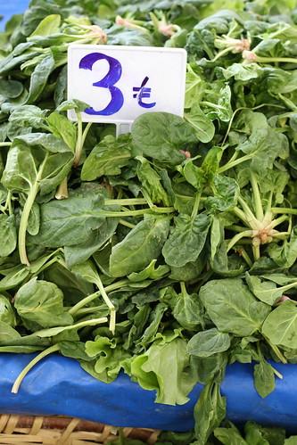 Wild Herbs Inebolu Market Istanbul