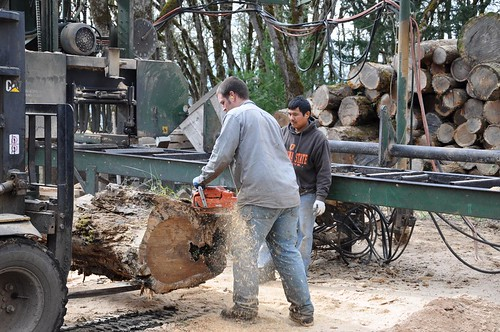Ramping up production at Zena Forest Products beginning last year provided family-wage employment to Nic Schrock (left) and Macario Espinoza who work alongside Ben at the mill.
