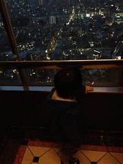 夕方散歩 エレベーター 2013/2/27
