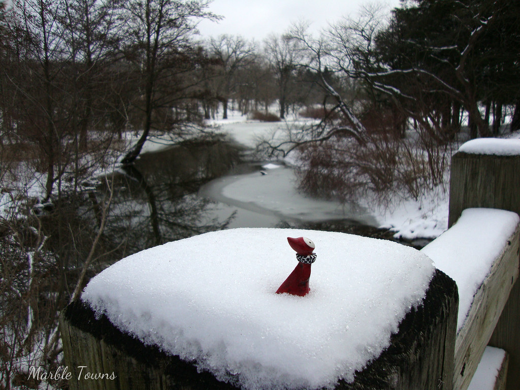 Poppet in winter landscape-1.JPG