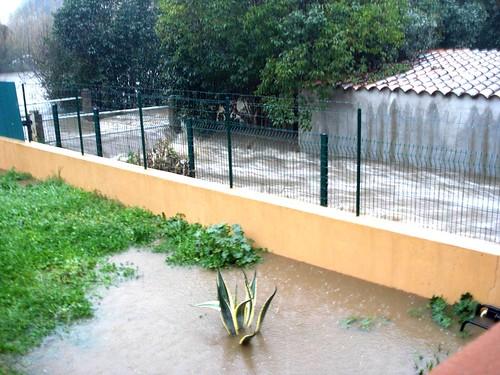 Le ruisseau de Casavecchia bordant le jardin de Jean-Marc)