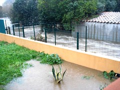 Le ruisseau de Casavecchia bordant le jardin de Jean-Marc