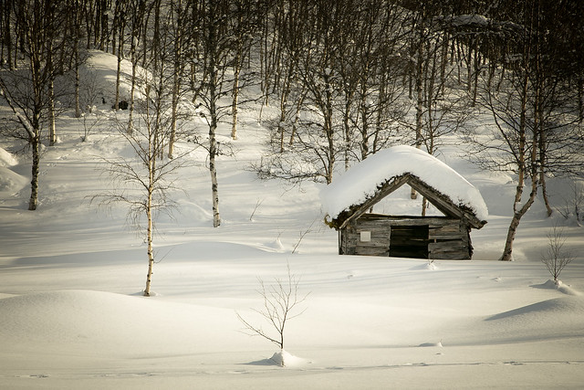 Snow provokes responses that reach right back to childhood