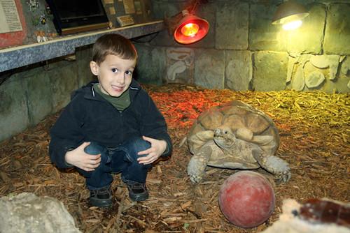 Aquarium_Nathan-and-Turtle