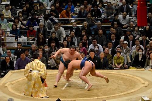 Sumo Falling