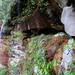 Small photo of Kentucky Waterfall