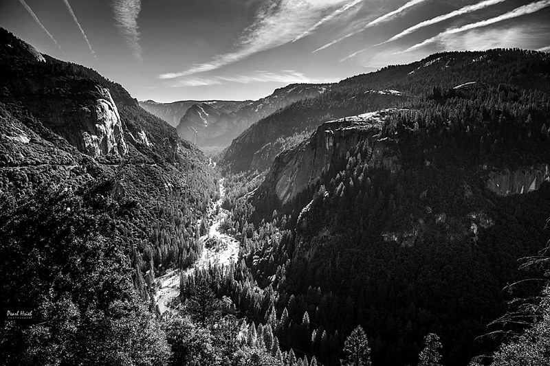 Yosemite National Park B/W