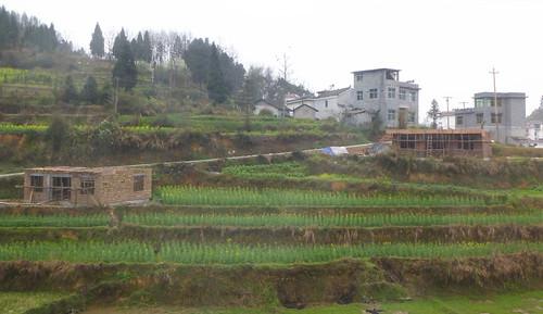 Hunan13-Zhangjiajie-Fenghuang-Bus (175)