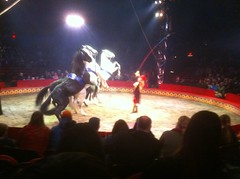 Boston - BIG APPLE CIRCUS