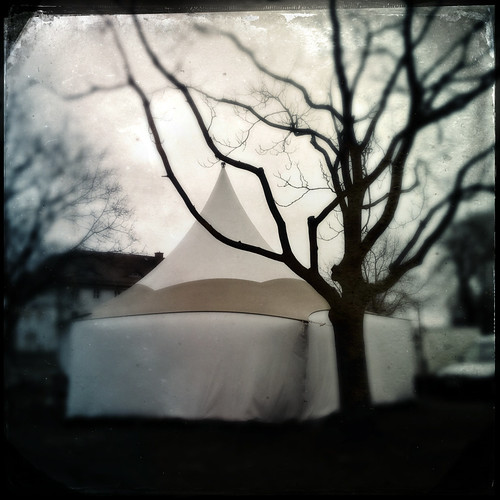 A tent and a tree