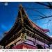 The Lama Temple 雍和宫 དགའ་ལྡན་བྱིན་ཆགས་གླིང་ (Beijing 北京)