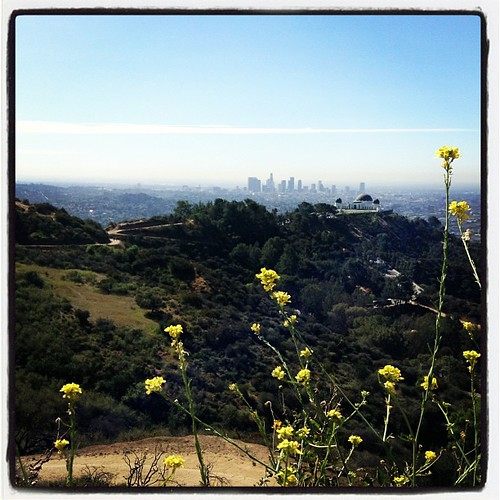 It's Thursday, family hike day! Today's hike was the Mount Hollywood (aka Dante's View) hike.