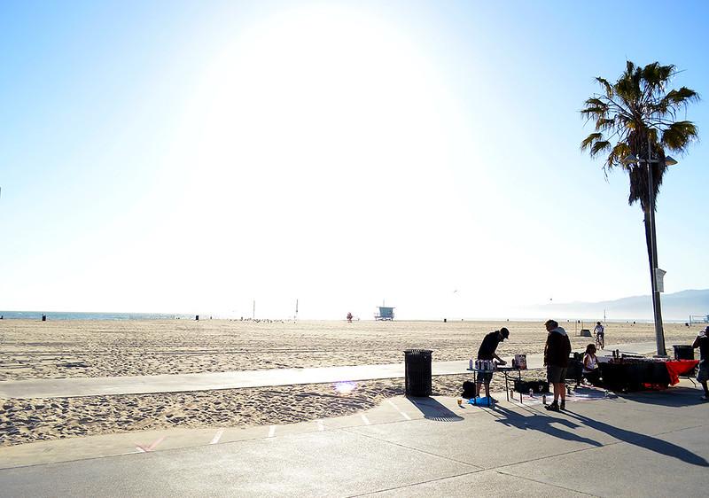 Sunny Venice Beach
