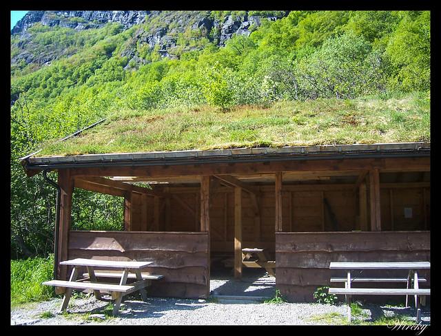 Fiordos noruegos Storfjord Geiranger Hellesylt Briksdal Loen - Casa cubierta de césped
