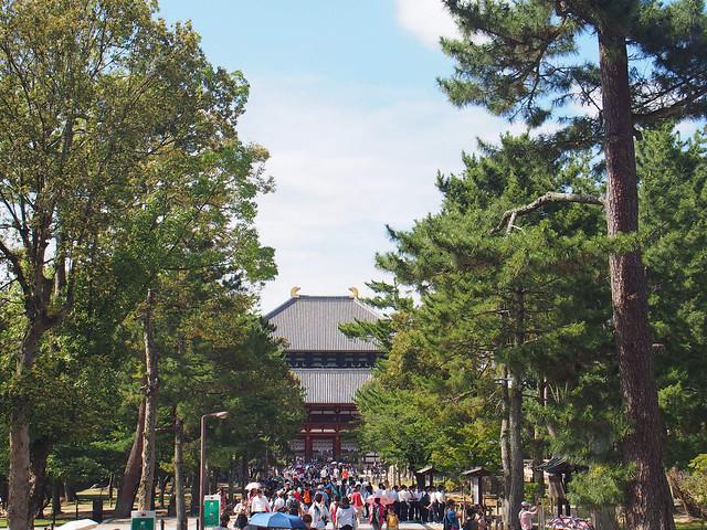 東大寺的中門