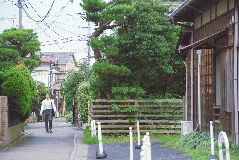 Kamakura / 鐮倉