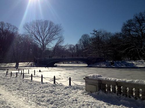 bridge over frozen lake, prospect park