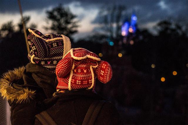 Disneyland - How To Information |.