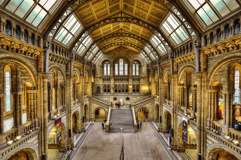 Hotels Near Natural Science Museum London