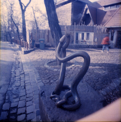 Budapest Zoo (13)