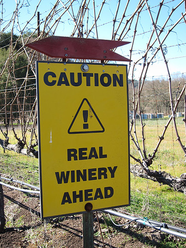 real winery ahead