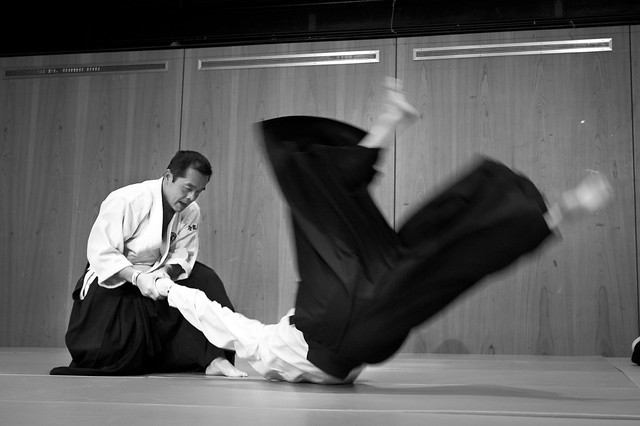 Aikido Impact