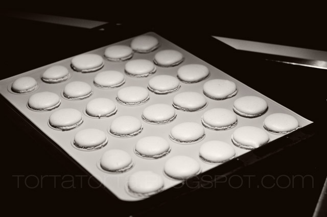 macarons 5 flickr