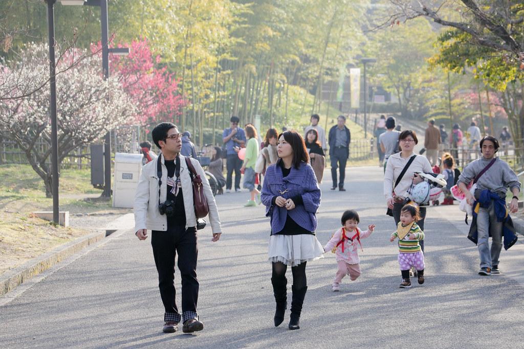 Minamikasugaoka 5 Chome, Ibaraki-shi, Osaka Prefecture, Japan, 0.002 sec (1/640), f/9.0, 170 mm, EF70-300mm f/4-5.6L IS USM
