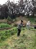 Global Exchange staff volunteer day-Urban Farming at Alemany Farm by Global Exchange Gallery