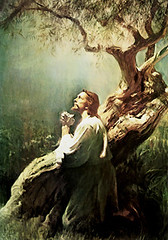 Getsemani 2