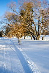 Holiday Park Golf Course Ski Trails - Saskatoon, Saskatchewan