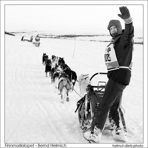 Finnmarksløpet - Bernd Helmich, helmut-dietz-photo