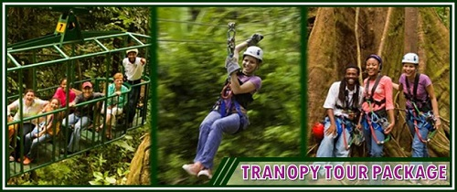 Tranopy Tour Package