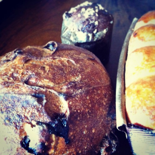 Manresa Bakery Project @Campbell Farmer's Market